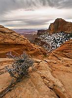 Canyonlands National Park desert landscape.