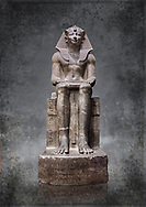Ancient Egyptian statue of Tuthmosis II, granodorite, New Kingdom, 18th Dynasty, (1479-1425 BC), Karnak, Temple of Amun. Egyptian Museum, Turin. <br /> <br /> Tuthmosis II is shown wearing Royal regalia including the shendyt kilt, the nemes headdress and the uraeus cobra on his forehead. Between his legs in a bulls tail, the symbol of power. On the sides of the throne is the sema-tawy, a sign composed of a lotus and papyrus, the symbols od Upper and Lower Egypt. Under the feet of the king are the Nine Bows, the enemies of Egypt. Together these symbolise that the pharaoh keeps the two halves of Egypt together and protects them against her enemies. Drovetti Collection. C 1376 .<br /> <br /> Visit our HISTORIC WALL ART PRINT COLLECTIONS for more photo prints https://funkystock.photoshelter.com/gallery-collection/Historic-Antiquities-Photo-Wall-Art-Prints-by-Photographer-Paul-E-Williams/C00002uapXzaCx7Y<br /> <br /> Visit our Museum ART & ANTIQUITIES COLLECTIONS to browse more photo at: https://funkystock.photoshelter.com/p/museum-antiquities