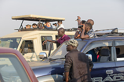 People Viewing Lions On Safari In Queen Elizabeth National Park
