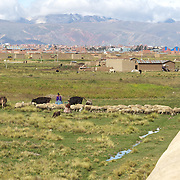 A local indigenous sheep herder walks past a water pipe at The Bolivian Ministry of Water treatment plant at Puchuckollo, Bolivia. The plant is run by state-owned Bolivian water utility EPSAS which manages the water distribution and sanitation services in capital La Paz and neighboring city El Alto.<br /> <br /> <br /> Climate change and the fast diminishing glaciers in the Andes are posing a serious threat to water supplies. Scientists expect that global warming will melt most Andean glaciers in the next 30 years.<br />  La Paz and it's sprawling satellite city El Alto are vulnerable to the effects of climate change and the retraction of the glaciers. Over 2 million people in the region depend heavily on the thawing of Chacaltaya and neighboring glaciers for fresh water. The dams in the highland areas of the Altiplano divide are basically fed by two sources, rainfall and the glaciers, both are suffering from global warming. The declining levels of water in the dams is presenting another problem, contamination and the concentrations of salts, The Bolivian government have launched a number of schemes to help combat the shortage of water and improved water treatment to maintain quality as well as trying to educate and change habits of water usage.<br /> <br /> <br /> Cochabamba, Bolivia, will host the World's People's Conference on Climate Change and the rights of Mother Earth from April 19th to April 22, 2010.