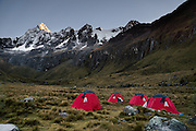 Day 3 of 10: Sunrise light strikes Nevado Taulliraju (19,100 ft or 5830 m) over our tent camp in Huaripampa Valley at 13,780 ft or 4200 m elevation. Trek 10 days around Alpamayo in Huascaran National Park (UNESCO World Heritage Site), Cordillera Blanca, Andes Mountains, Peru, South America.