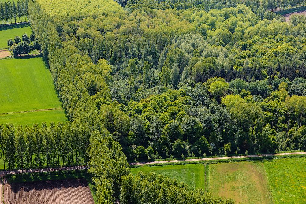 Nederland, Noord-Brabant, Gemeente Sint-Oedenrode, 27-05-2013; houtteeelt, direct ten zuiden van Schijndel. Productiebos met aangeplante bomen, onder andere  populieren.<br /> <br /> QQQ<br /> luchtfoto (toeslag op standard tarieven);<br /> aerial photo (additional fee required);<br /> copyright foto/photo Siebe Swart.
