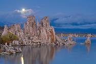 Moonset at dawn over tufa, South Shore, Mono Lake, Mono County, Eastern Sierra, California