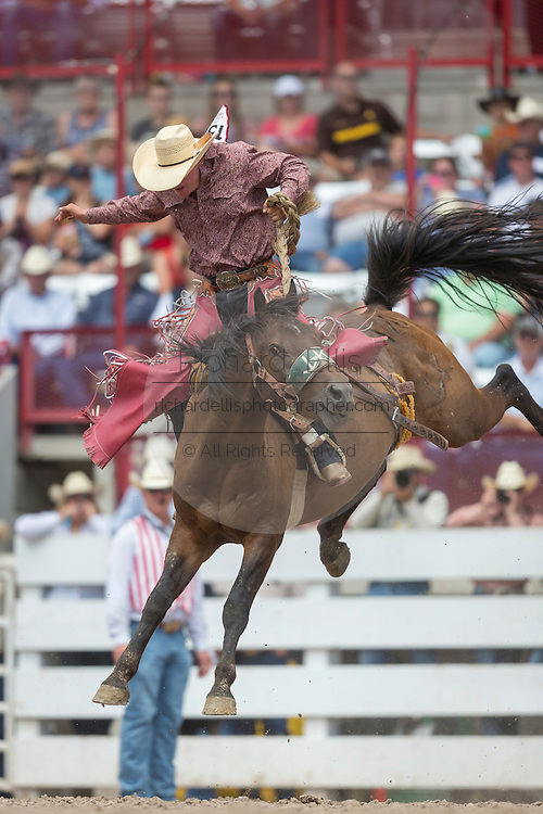 Rookie Saddle Bronc rider Casey Wood hangs on to Kamikaze Wino at the Cheyenne Frontier Days rodeo at Frontier Park Arena July 24, 2015 in Cheyenne, Wyoming. Frontier Days celebrates the cowboy traditions of the west with a rodeo, parade and fair.