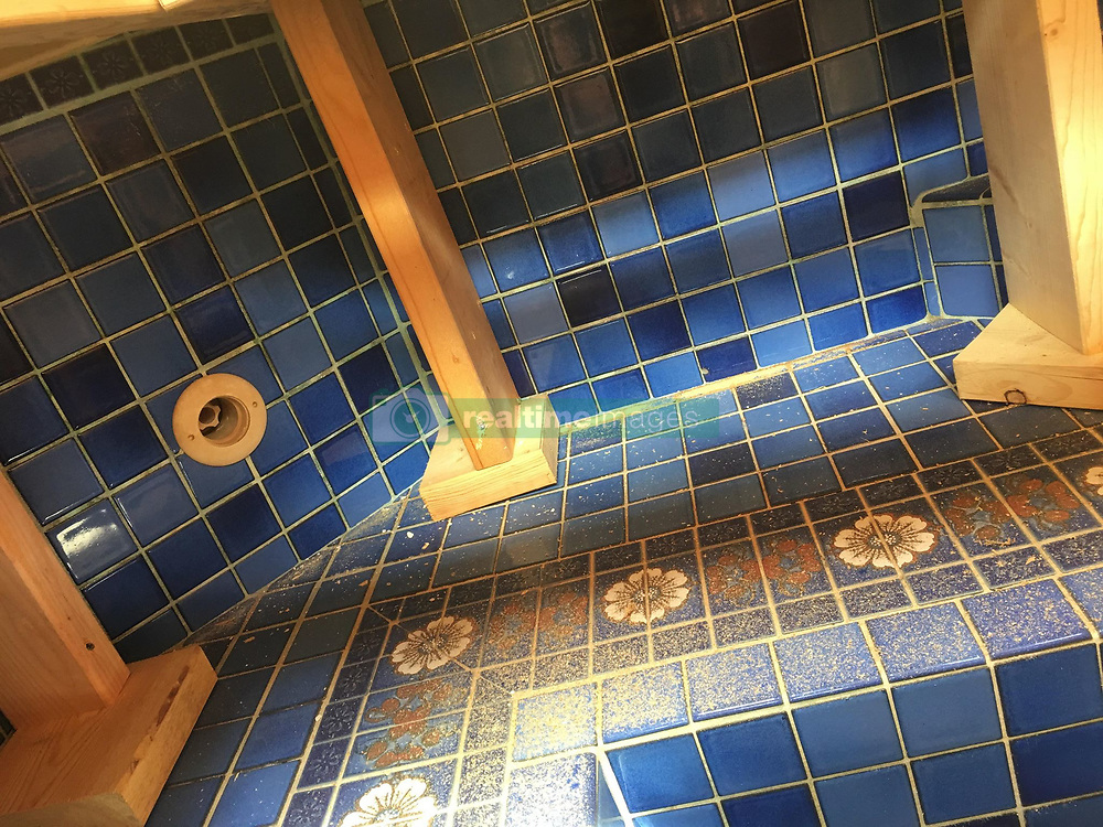 """A couple in the US have uncovered a beautiful hidden Roman-esque bath under the floor of their home office.<br /> <br /> Mark Ronsman, 39, and his wife Jenny, also 39, bought their home almost three-and-a-half years ago and had been told there was once a hot tub in one of the rooms.<br /> <br /> """"The elderly woman who sold us the house told us it was there,"""" Mark Ronsman told Insider.<br /> <br /> """"She had gotten older and stopped using it on any kind of regular basis, so she got much more use out of it as an office.""""<br /> <br /> The couple wasted no time in pulling up the cover and unearthing the hot tub, but it's only been during the recent lockdown that they've had the extra time on their hands to set about getting it up and running.<br /> <br /> """"It was impossible to imagine what it would look like,"""" he added.<br /> <br /> """"I was very excited to see how bad or good it might be.""""<br /> <br /> Mark had to be careful as he pulled up the wood covering that sat on the tub.<br /> <br /> """"I didn't want to damage the tub while tearing apart this platform in there,"""" he said.<br /> <br /> """"I tried to take out as many screws naturally as I could, but some things needed to be cut apart.""""<br /> <br /> """"I started by just using a hole saw so I could make a few holes and peek through.""""<br /> <br /> """"After I understood how it was all put together, I ended up just cutting out a big square in the middle so I could get at it,"""" he said of the process.<br /> <br /> The larger square allowed him to see more of the tub.<br /> <br /> A blue, floral tile pattern started to become visible, which Mark wasn't expecting.<br /> <br /> """"We were truly shocked and overjoyed that something so beautiful was in our house,"""" Mark continued.<br /> <br /> """"The tile was just beautiful! I was also truly grateful to discover the previous owners took such great care that what they did could be reversed.""""<br /> <br /> """"We never expected it to be so big and deep,"""" he added.<br /> <br /> Mark and Jenny have """