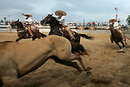 Charros compete to rope a horse in the Jaripeo, or Mexican Rodeo, at La Feria Reynosa in the Mexican border city of Reynosa.  The annual state fair draws thousands from both sides of the border.