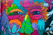 Colourful elaborate graffiti of a face. Photographed in Figueira da Foz, Portugal