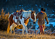 Cowboy leading his horse on a ranch in northeastern Wyoming