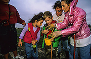 A family helps plant red mangroves, Rhizophora mangle, on the Snook Islands, in the Lake Worth Lagoon to help restore the local environment.