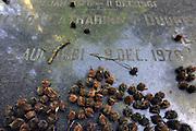 Nederland, Ubbergen, 8-6-2012Grafsteen op het kerkhof bij het nederlands hervormde kerkje in dit dorp bij Nijmegen.Foto: Flip Franssen