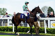 """Out Of Breath ridden by Nicola Currie and trained by Jamie Osbourne in the Let's Play """"Four From The Top"""" / British Ebf Novice Median Auction Stakes race.  - Mandatory by-line: Ryan Hiscott/JMP - 01/05/2019 - HORSE RACING - Bath Racecourse - Bath, England - Wednesday 1 May 2019 Race Meeting"""
