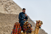 Camel rider sitting on his camel in front of the great Pyramid at Giza in Cairo