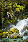 Scenic landscape with a waterfall and rocks with moss, Routeburn Track, South Island, New Zealand