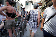 man walking with large dogs in crowded shopping street