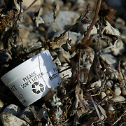 Idaho, Canyon County, Deer Flat National Wildlife Refuge, Nampa, close up of a discarded styrofoam bait container lies on the shore with the saying Please Don't Litter on the container