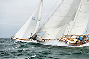 Ticonderoga sailing in the Opera House Cup.