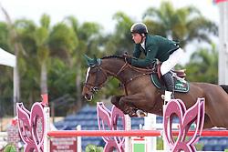 O' Connor Cian (IRL) - Everything<br /> Horseware GP CSI 2*<br /> Wellington 2012<br /> © Hippo Foto - Cealy Tetly