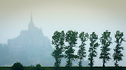 Mist and trees, Mont Saint-Michel, Normandy, France