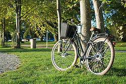 Bicycle leaning tree grass countryside