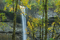 South Falls, Silver Falls State Park Oregon