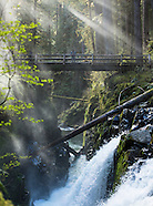 Olympic National Park Photos - stock images