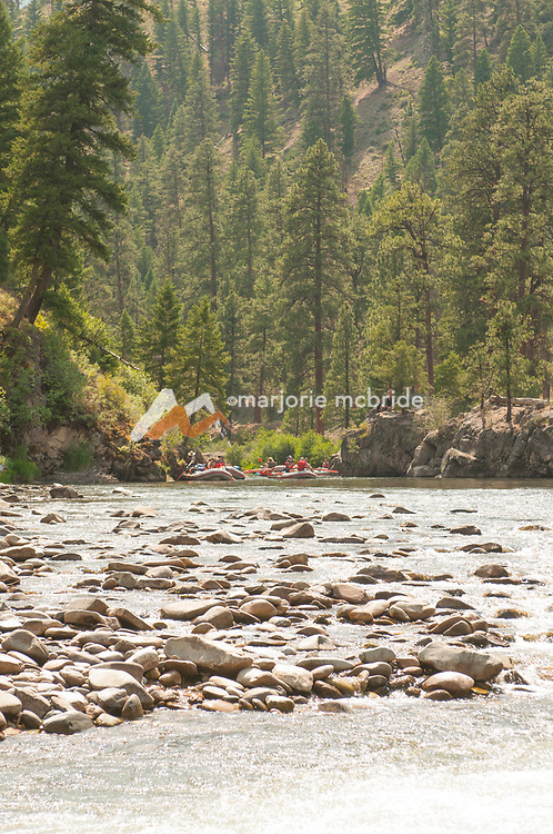 Scenic rafting on the Middle Fork of the Salmon River, Idaho.