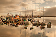 """Newlyn harbour in winter. between heavy rain showers. The whole fishing fleet seemed to be in this still active Cornish fishing harbour. Penlee Lifeboat a Severn-class 17-36 """"Ivan Ellen"""" (on station 2003) is moored alongside the pontoon."""