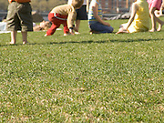 group of children playing.