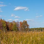 Tinkers Creek State Nature Preserve