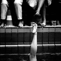 The Netherlands, Diemen, 00-00-00.<br /> Swimming, Synchronized Swimming.<br /> Photo : Klaas Jan van der Weij
