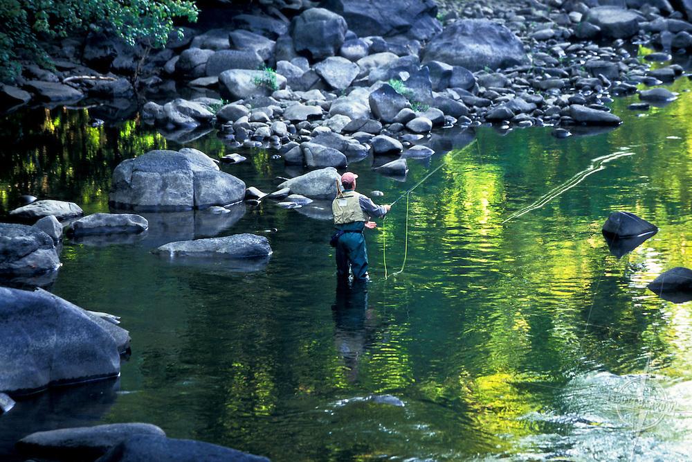 Man fly fishing in stream.
