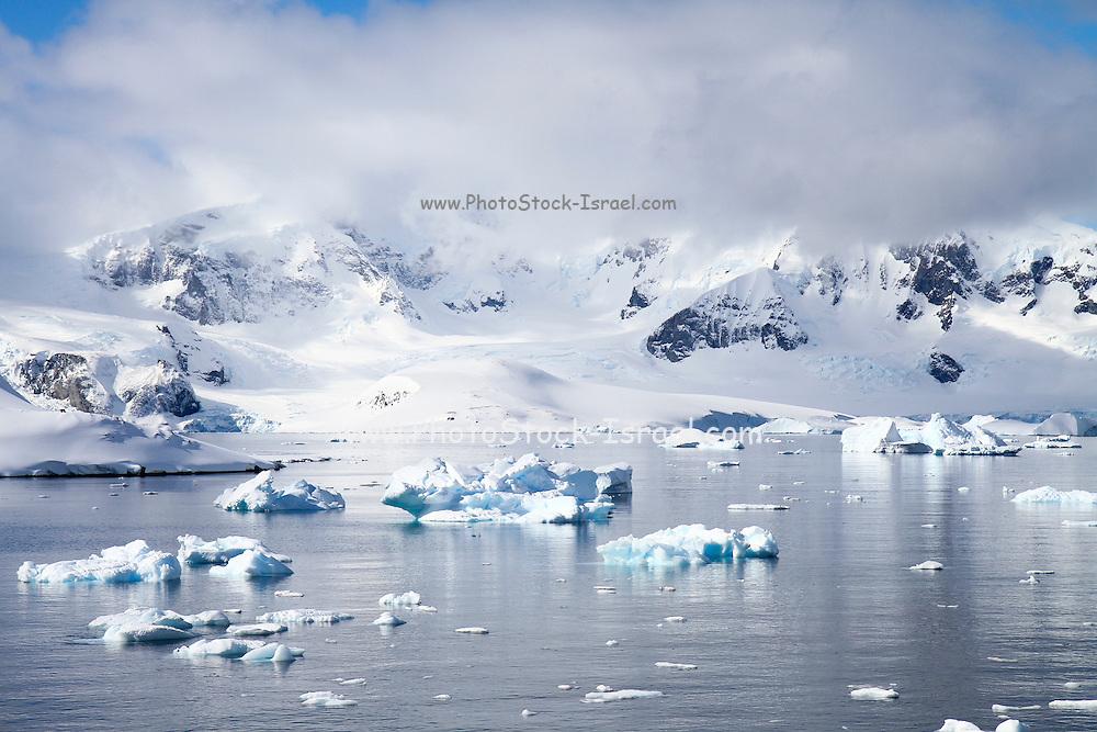 Icebergs and mountains of Cuverville Island near Antarctic Peninsula, Antarctica
