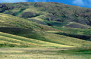 Steppe Grassland, Kazakhstan