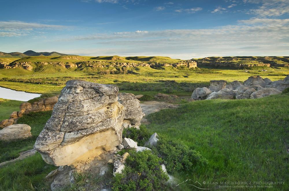 Eroded sandstone hoodoos along the Milk River, Writing on Stone Provincial Park Alberta Canada