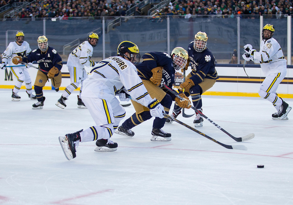 January 05, 2019:  Notre Dame forward Dylan Malmquist (25) skates with the puck as Michigan defenseman Nick Blandenburg (7) defends during NCAA Hockey game action between the Michigan Wolverines and the Notre Dame Fighting Irish at Notre Dame Stadium in South Bend, Indiana.  Michigan defeated Notre Dame 4-2.  John Mersits/CSM
