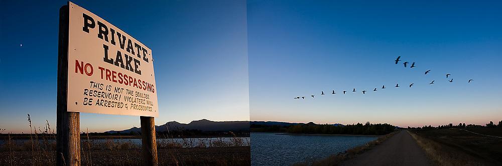 "A flock of birds, disregarding the ""No Trespassing"" sign, jump the dike separating Boulder Reservoir and a private lake outside Boulder, Colorado."