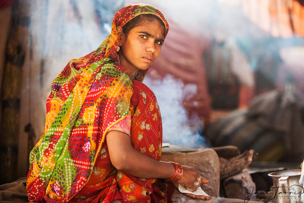 A serious look on a young girl cooking in a tent at the Pushkar camel fair, Pushkar, Rajasthan, India