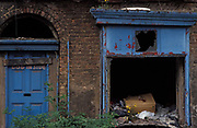 The rotting blue door of a Victorian terraced house now dilapidated and abandoned on the streets of Toxteth, on 14th June 1991, in Liverpool, England. Toxteth is an inner-city area of Liverpool, Merseyside, located to the south of the city and, in the 1990s, was synonymous with social issues, degradation and poverty with some of the most underprivileged families in the UK. Recently many streets in the worst areas have been demolished including Beatle Ringo Starrs childhood home.