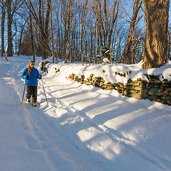 A woman snowshoeing next to an old stone wall in the forest on Indian Hill in West Newbury, Massachusetts.