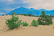 Carcross Desert - affectionately known as the World's Smallest Desert. The Coast Mountains.<br />