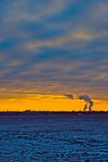 Looking across a field at dusk near Bently, Kansas, in January 2010