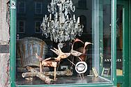A Curious Shop, Hudson, NY