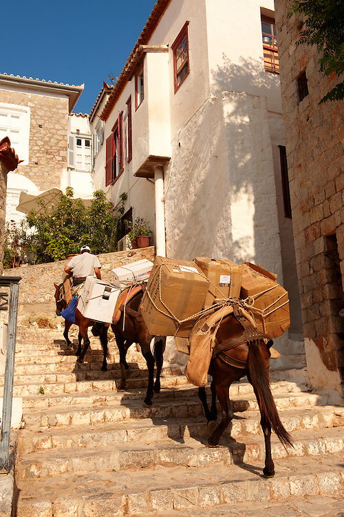 Pack Ponies climbing the steps on Hydra,  Greek Saronic Islands .<br /> <br /> Visit our GREEK HISTORIC PLACES PHOTO COLLECTIONS for more photos to download or buy as wall art prints https://funkystock.photoshelter.com/gallery-collection/Pictures-Images-of-Greece-Photos-of-Greek-Historic-Landmark-Sites/C0000w6e8OkknEb8
