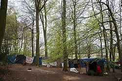 Wendover, UK. 28th April, 2021. A protection camp occupied by activists opposed to the HS2 high-speed rail link in ancient woodland at Jones Hill Wood in the Chilterns AONB. Felling of the woodland, which contains resting places and/or breeding sites for pipistrelle, barbastelle, noctule, brown long-eared and natterer's bats, has recommenced after a High Court judge yesterday refused campaigner Mark Keir permission to apply for judicial review and lifted an injunction on felling.