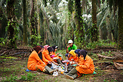 Female workers in protective eqipment take a break from crop spraying in a palm oil plantation in Ukui, Riau Province, Indonesia, on 16 June 2015. This area has become dominated by palm oil production, and some smallholder farmers have formed co-operatives to share costs, increase access to markets, and become certified by the Roundtable on Sustainable Palm Oil. The workers are part of Amanah, a local cooperative that has helped over 400 farmers become RSPO certified - reducing their use of pesticides and fertilizers, increasing yields, and improving farm management. Smallholders account for 40% of global palm oil production, and as such play an important role in increasing sustainability within the industry.