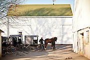Amish men secure their horse buggy at a stable in Gordonville, PA.