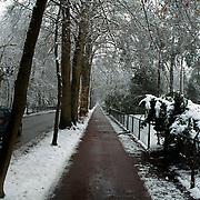 Besneeuwdse bomen Naarderstraat Huizen