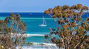 Surfing And Sailing On The Pacific Ocean In Dana Point California