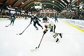 Dartmouth vs. Vermont Men's Hockey 01/10/20