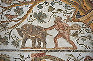 Detail of a Roman mosaics design depicting Silenus and Cupids showing a baby elephant, from the House of Sienus, ancient Roman city of Thysdrus. 3rd century AD. El Djem Archaeological Museum, El Djem, Tunisia. .<br /> <br /> If you prefer to buy from our ALAMY PHOTO LIBRARY Collection visit : https://www.alamy.com/portfolio/paul-williams-funkystock/roman-mosaic.html . Type - El Djem - into the LOWER SEARCH WITHIN GALLERY box. Refine search by adding background colour, place, museum etc<br /> <br /> Visit our ROMAN MOSAIC PHOTO COLLECTIONS for more photos to download as wall art prints https://funkystock.photoshelter.com/gallery-collection/Roman-Mosaics-Art-Pictures-Images/C0000LcfNel7FpLI